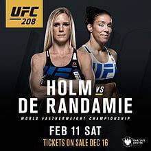 holm vs de randamie